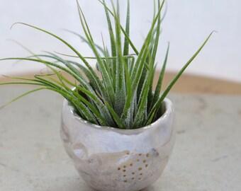 moon air plant holder,  moon totem, ceramic plant pot, ceramic moon, boho art, moon decor
