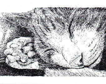 Sleeping Cat Note Cards