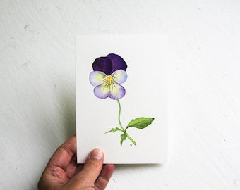 Watercolor Pansy Original Botanical Miniature Painting / Contemporary Realistic Fine Art Illustration / Purple Yellow Woodland Flower / 4x6