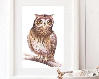 Owl Print, Curious Owl, Watercolor Art Print, Cute Baby Owl, Owl, Owl Painting, Owl Decor, Bird Print, Nursery Animal Prints 7,8x11,8