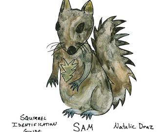 Sam the Squirrel - Animal Identification Guide Art Print