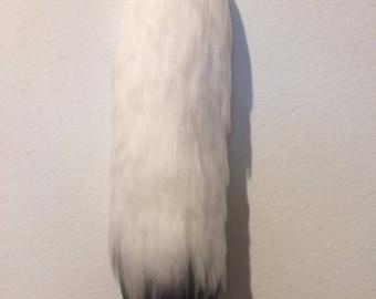 Black & White tail