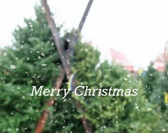 Christmas Art, Christmas Photo, Christmas Tree