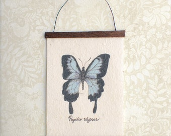 Miniature Natural History Wall Hanging - Papilio ulysses