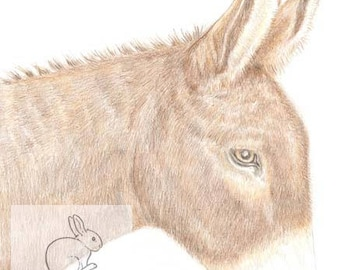 Dougal the Donkey -  Birthday Card