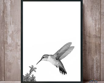Hummingbird print, Hummingbird, Bird print, Bird art, Hummingbird wall art, Hummingbird poster, Hummingbird prints, Hummingbird photo