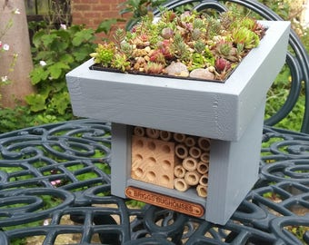 Handmade Mini Bughouse with Sempervivum Greenroof