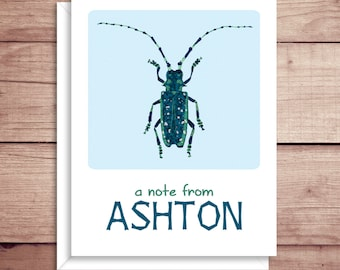 Beetle Note Cards - Folded Note Cards - Personalized Bug Stationery - Personalized Thank You Notes - Illustrated Note Cards