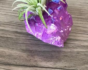 Deep Purple Air Plant Crystal Garden, Healing Crystal Garden, Purple Air Plant Crystal, Indoor Air Plant Garden