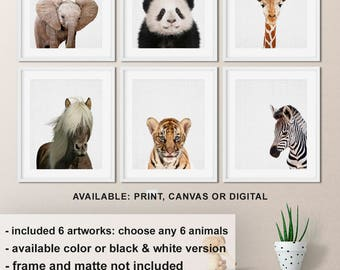 Animal prints for nursery, Horse Panda Safari Animal prints, Nursery animal print, Baby animal prints, Animal nursery prints Print/Canvas/Di