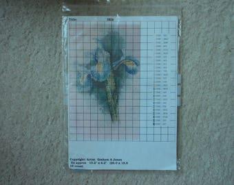 Lindum Studio Cross Stitch Chart       Iris