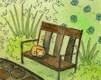 Nap on the Garden Bench