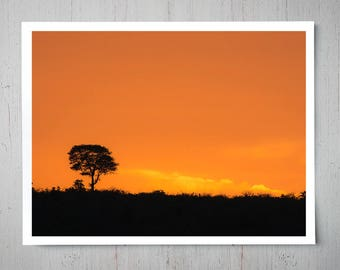 South African Sunset, Safari Africa Landscape Photography, Archival Giclee Print, Nature Photo - Multiple Sizes Available