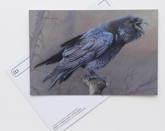 Postcard Raven - Bird - Stationery