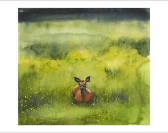 Juin Deer - impression d'aquarelle originale