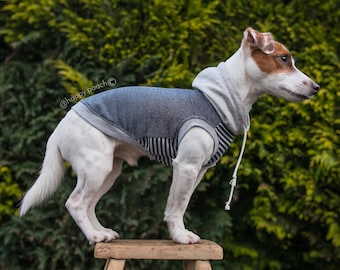 Custom dog hoodie, Dog clothes, Warm dog hoodie, Dog coat, Large dog clothes, Small dog clothes, Dog Hoodie, Custom tailored dog clothes