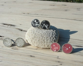 Eggshell Post Earrings