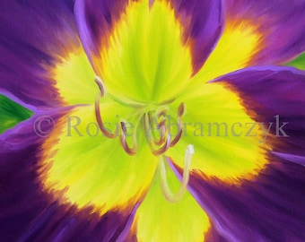 Purple Daylily, Art Print (By Rosie Abramczyk) SALE!