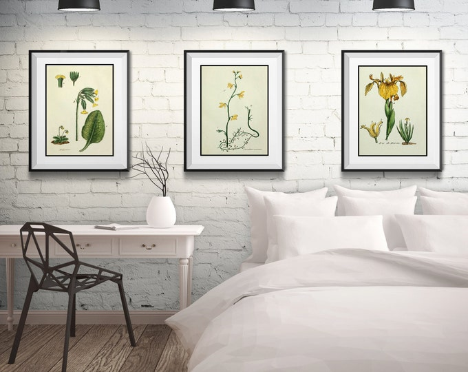 3 Vintage Floral Prints - Matted and Framed - Free Shipping - Yellow Floral Prints - Black or White Frame - A Variety of Sizes and Styles