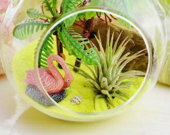 Flamingo Beach Terrarium Kit ~ Small Air Plant Terrarium Kit ~ Palm Trees ~ Driftwood ~ Pink Flamingo ~ Beach Decor ~ Beach Gift ~ Christmas
