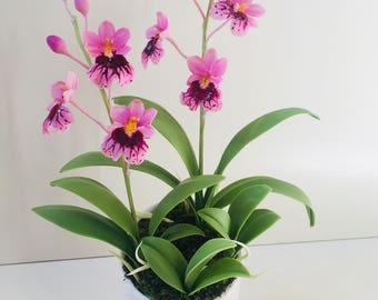 polymer clay flower, polymer clay orchid flower, clay Flower,cold porcelain clay flower,clay flower with stem,flower arrangement