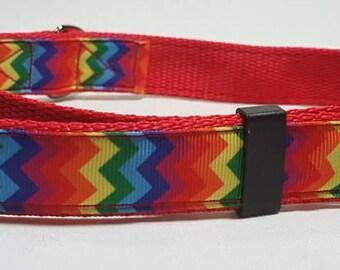 Zig zag rainbow dog collar