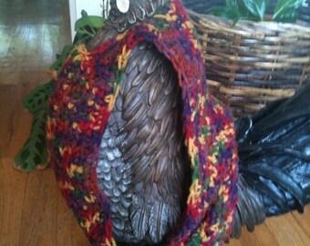 Chicken Sweater, Chickens, Hens, Hen Sweater, Sweaters, Crochet, Chicken Accessories