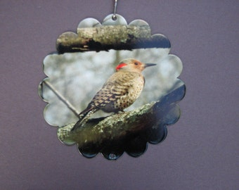 Northern Flicker Garden Spinner