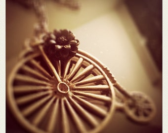 Antique bycicle with a black flower necklace