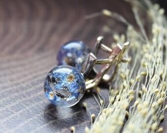 Forget me not earrings Terrarium earrings Real flower earrings Nature earrings Forgetmenots Resin jewelry Pressed flower Botanical jewelry