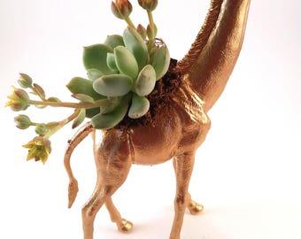 Giraffe Animal Planter + Succulent \\ Animal Planter \\ Desk Accessory \\ Dorm \\ Home Decor \\ Gift \\ Office Decor \\ Desk Plant