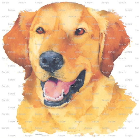 Golden Retriever Painting Dog Birthday - Edible Cake and Cupcake Topper For Birthday's and Parties! - D6413