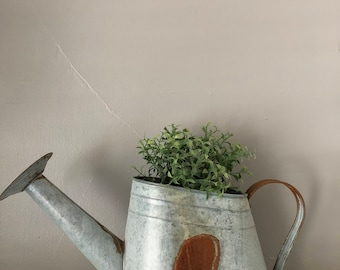 Galvanized Watering Can | Vintage, Shabby, Farmhouse, Gardening Watering Can
