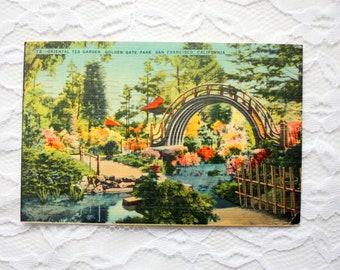 Vintage 1949 Golden Gate Park Linen Postcard, San Francisco Postcard, Garden Postcard California Postcard