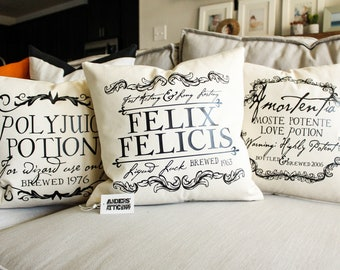 Wizard Potion Pillow Set- Home Decor, Gift for Her, Gift for Him, Christmas Gift, Magic, Cushion Cover, Book Lover Gift