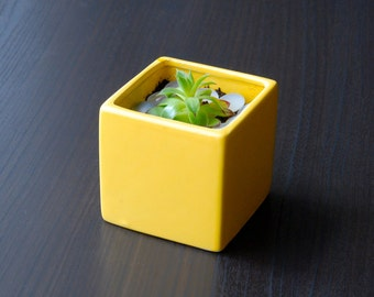 Little Modern Glossy Yellow Ceramic Cube Planter / Yellow Succulent Planter / Yellow Ceramic Planter / Yellow Pottery Vase (Without Plants)