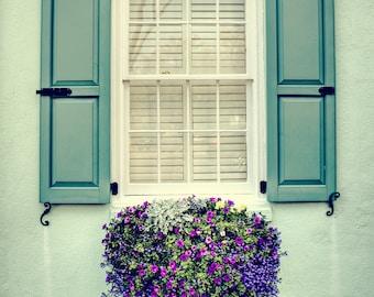 Window Flower Box in Charleston South Carolina Photography Southern Art Mint Green Travel 8x10, 11x14, 16x20 SC Photo Home Decor Wall Art