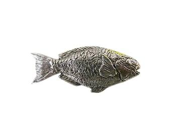 Parrot Fish ~ Refrigerator Magnet ~ S087M,SC087M,SP087M