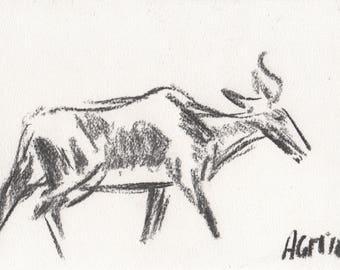 Bontebok antelope charcoal sketch (original)