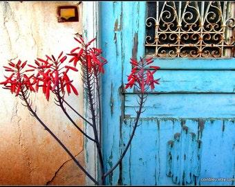 Photography print : Greek blue door, red flower, Greece photography, Mediterranean decor, blue door photography, textured door. floral print