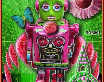 Roberta The Robot