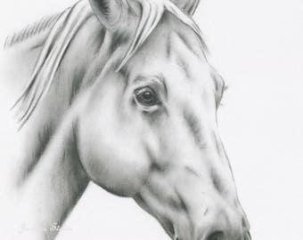 "Horse Print, Charcoal Horse Drawing, 8""x10"" White Horse Art, Horse Sketch, Equine Art, Horse Sketch, Farm Art, Farmhouse Decor, Charcoal Art"