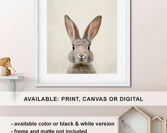 Bunny nursery decor, Rabbit Print, Baby animal nursery, Animal nursery canvas art, Woodland animal prints, Bunny decor Print/Canvas/Digi