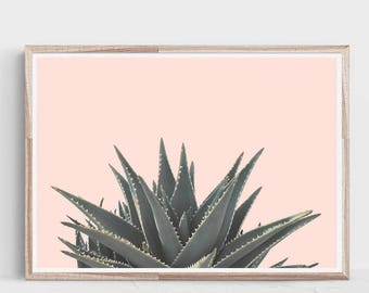 Succulent Print,Horizontal Wall art,Succulent Wall Art,Horizontal Print,Tropical Print,Plant Print,Succulent Art Print,Cactus Print,Cactus