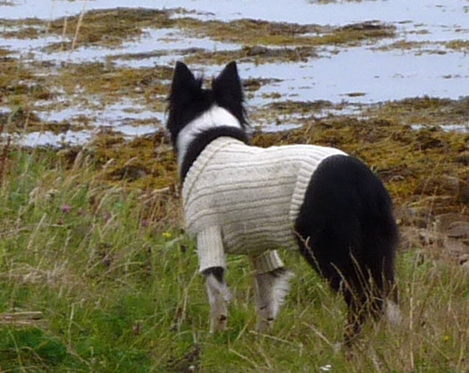 pdf pattern for the Sea Dog Gansey (and Matching Hats for the Humans) by Elizabeth Lovick - instant download