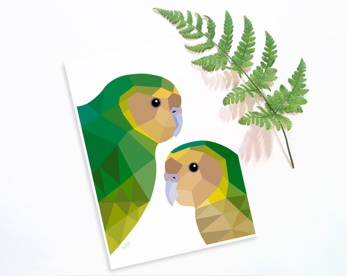 Kakapo print, Kakapo illustration, Kakapo poster, New Zealand native birds, Kiwi art, New Zealand birds, New Zealand gift, Kiwiana, NZ decor