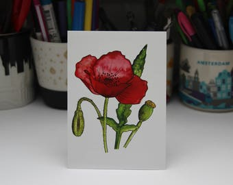 Card Poppy