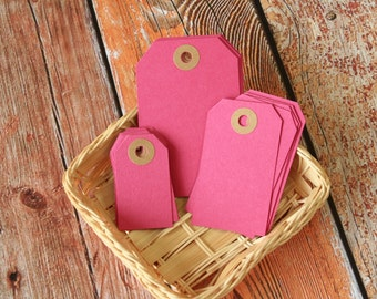 RASPBERRY Pink Reinforced Luggage Tag