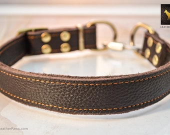 """Adjustable Leather Martingale Dog Collar Quick Release Brass Color Real Genuine Leather Dark Brown Small to Large Breed Dogs -  12"""" to 24"""""""