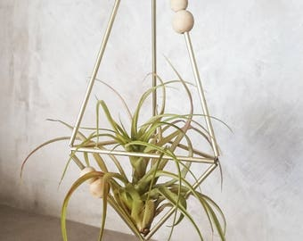 Hanging Himmeli with Tillandsia